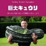 東京支店祭り!キュウリ&HBD!!